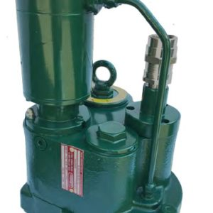 Submersible fuel pumps for seaport
