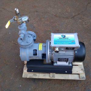 """LPG αντλία 1"""" LPG-100 (220V-50Hz)"""